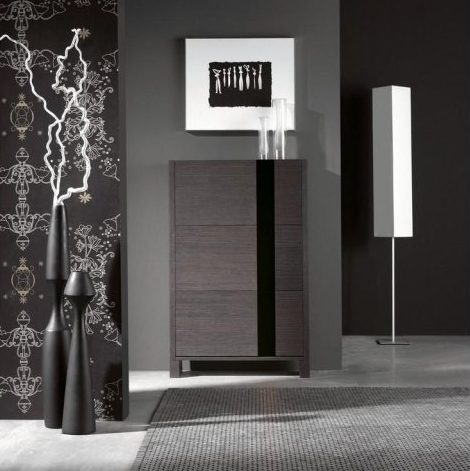 meuble chaussures gris style atylia pickture. Black Bedroom Furniture Sets. Home Design Ideas